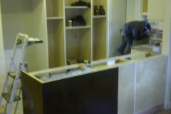 kitchen-reno-by-caliber-west-in-surrey-bc-10
